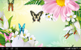 Butterflies Live Wallpaper HD