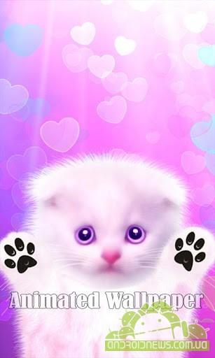 Котенок лижет экран для мобильных понравился