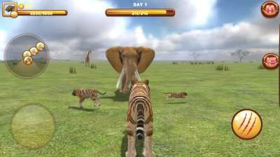 Extreme Tiger Attack